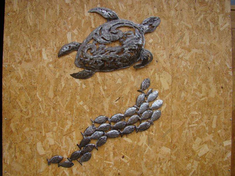 tortue-de-mer-fersapassion